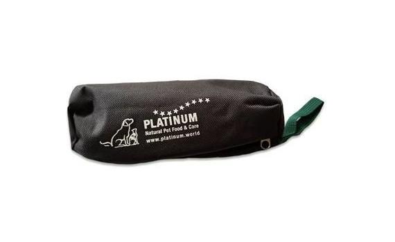 Platinum Foder dummy